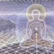 デトックス&善玉菌xひと月&瞑想10日間を終えて