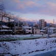 冬黄昏トレイン。