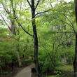 那須高原に甥っ子夫婦の案内で姉妹旅行しました(^.^)