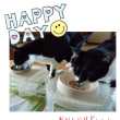 アッちゃんとキッちゃんの誕生日