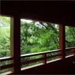 出流山(いづるさん)満願寺の秋海棠・2