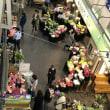 朝6時半。青果と花きで日本1の取り扱い量を誇る東京の太田市場を訪問。市場法改正案審議を前に衆議院農林水産委員会で卸業者、仲卸業者、売買参加者の代表と意見交換。貴重なご意見ありがとうございました。