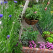 「東の庭」で過ごす朝のひと時