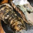 新鮮な魚介を堪能できるバル 「湘南バル はなたれ The Fish and Oysters」