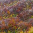 鳥海山のある風景(秋の鳥海山)