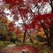 紅葉の徳明園