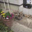 垣根剪定・枝葉の処分