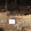 世界遺産登録を目指して 百舌鳥・古市古墳群 発掘調査