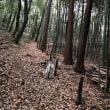 新治市民の森