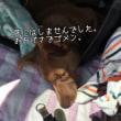 五郎、急遽病院へ…