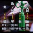 大相撲11日目