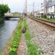 アカバナトチノキが咲き始めた日の前橋の路地は「広瀬川沿いに消えかけている路地」