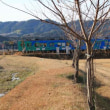 冬景色の伊賀鉄道 伊賀忍者が行く(三重県)