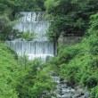 千国砂防ダム:北安曇郡小谷村千国