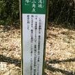 よこやまの道1