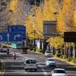 甲州街道から高尾山ビヤマウントを望む!