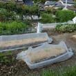再設置と苗の植付
