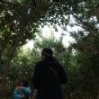 大阪湾に未来の森