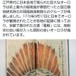 気象兵器じゃなくオーロラは日本で観れる