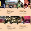 2019釜山燃灯祭り 5月1日~12日