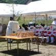 五月晴れのもと、白山市・白山比咩神社で「御田植祭」