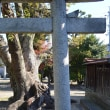 神社久御山0161 珠城神社