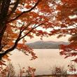 山中湖の紅葉まつり2016