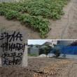 18年07月19日 ジャガイモ収穫