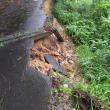 大雨で道路の崩落