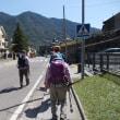 ピレネー山小屋縦走トレッキング;第7日目(3);オルデサ渓谷登山口からトルラへ