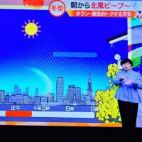 1/22 森田さんの 黄色の花は菜の花なんだろうけど、ミモザを思い
