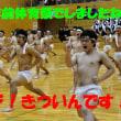"""【憶測であります:日本体育大学にガバナンスは無いの?と不思議に思うのでは?計画された組織解体?】日大アメフト会見直前に井上コーチが同僚に送った""""あるLINE""""の内容が流出し一同驚愕…"""