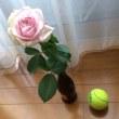 薔薇とテニスボール