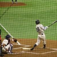 全日本大学野球選手権は東洋大学が優勝!