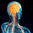 Brain Tuning(脳の調律)開発話