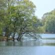 3377 静かな湖