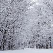 ふるさと・雪の朝