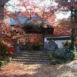 薬王寺の紅葉