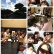 沖縄8日目もパワフルエネルギーを浴びました~