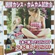 発酵カシス・発酵カムカム試飲会