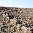 サウジの砂漠に謎の構造物 400近くも