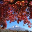 富士山 11月 「私のベスト 」