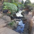 ホテルニューオータニ 2017年お正月 庭園散歩