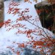 魚飛渓の紅葉Ⅱ