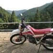 セローで和泉の山をウロウロ、そしてZ1カムチェーン調整