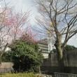 東京競馬場周辺