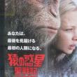 映画「猿の惑星・聖戦記」満足度80%