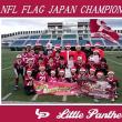 2018年シーズンは、中学生:日本一、小学生:全国3位、小学生低学年:全国準優勝