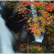 奥日光の紅葉 竜頭の滝 (2の2)  ★ 2018.10.22 ★