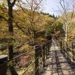 花貫渓谷 汐見滝吊り 7670